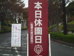 11-11-08①.jpg