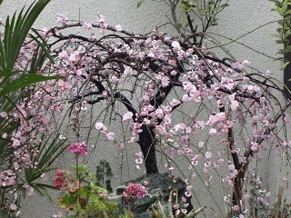 12-04-01②.jpg