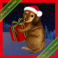 クリスマス犬.jpg